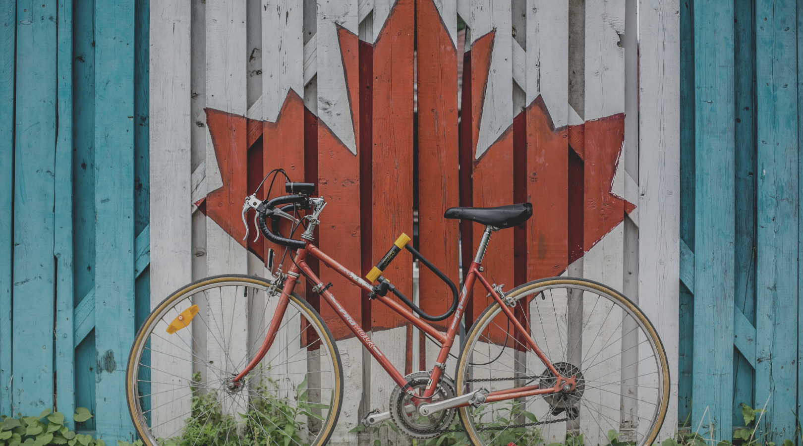 Canada Day 2019: Canadian Clients Powered by Easyship