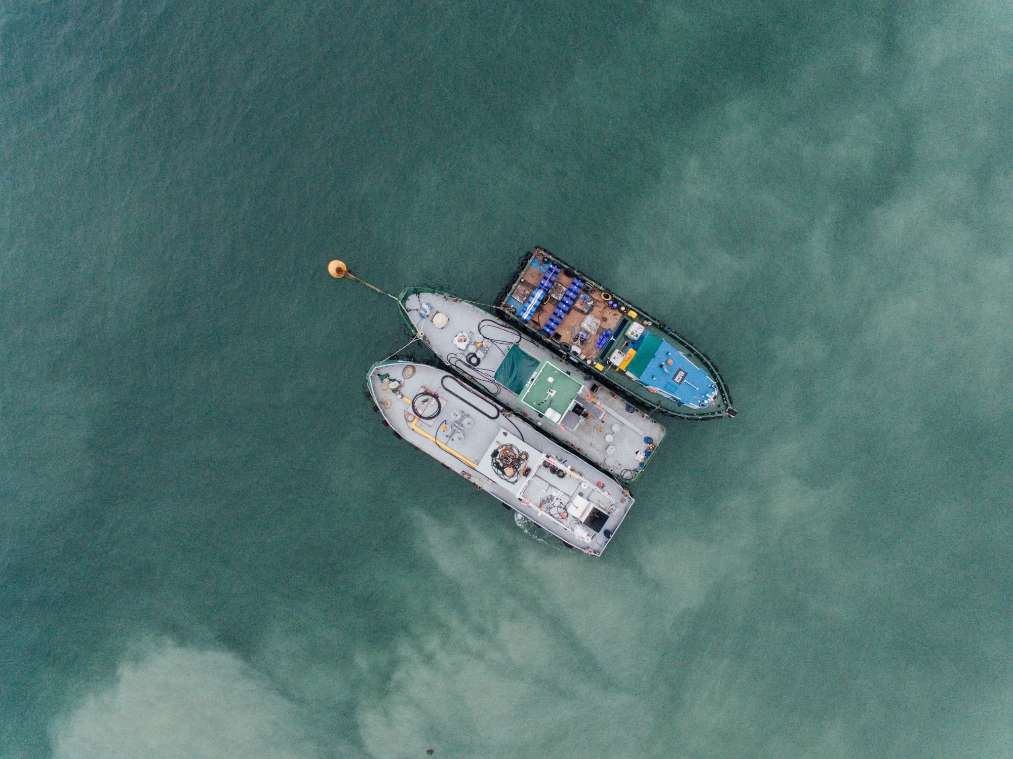 Coronavirus: Ships in Quarantine