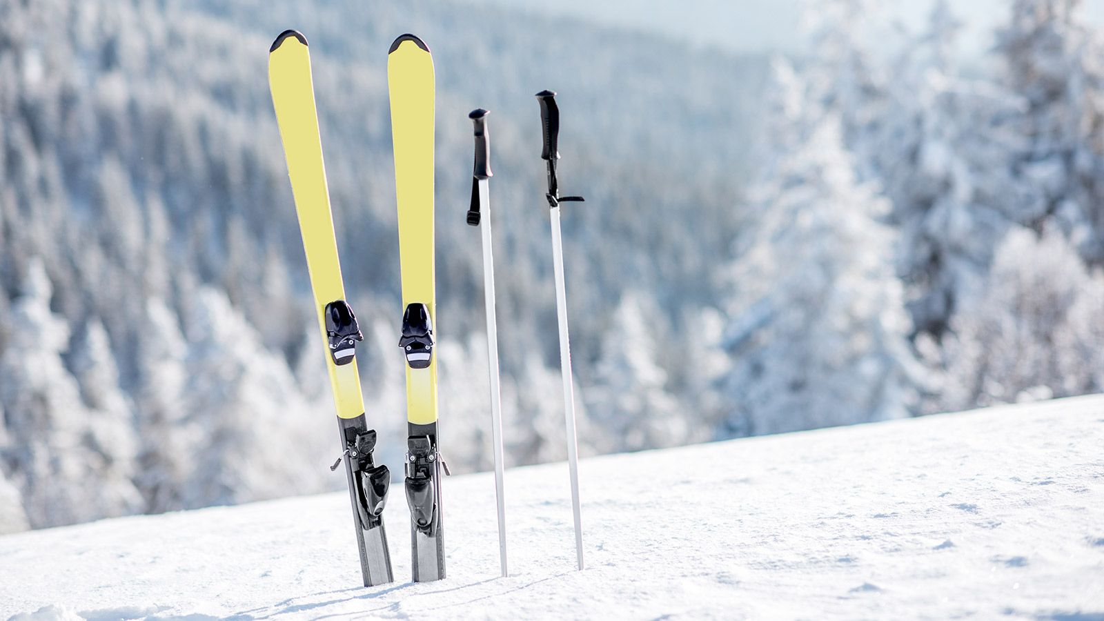 The Ultimate Guide to Shipping Skis (and Snowboards)